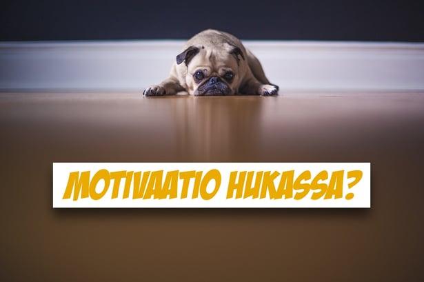 blogi-motivaatio.jpg